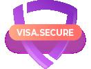 asset-2visa-secure