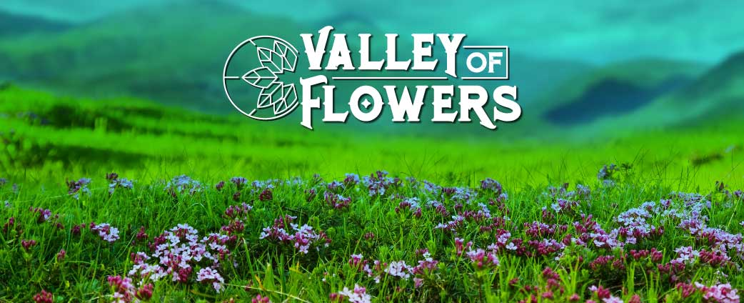 valley-of-flowers-01